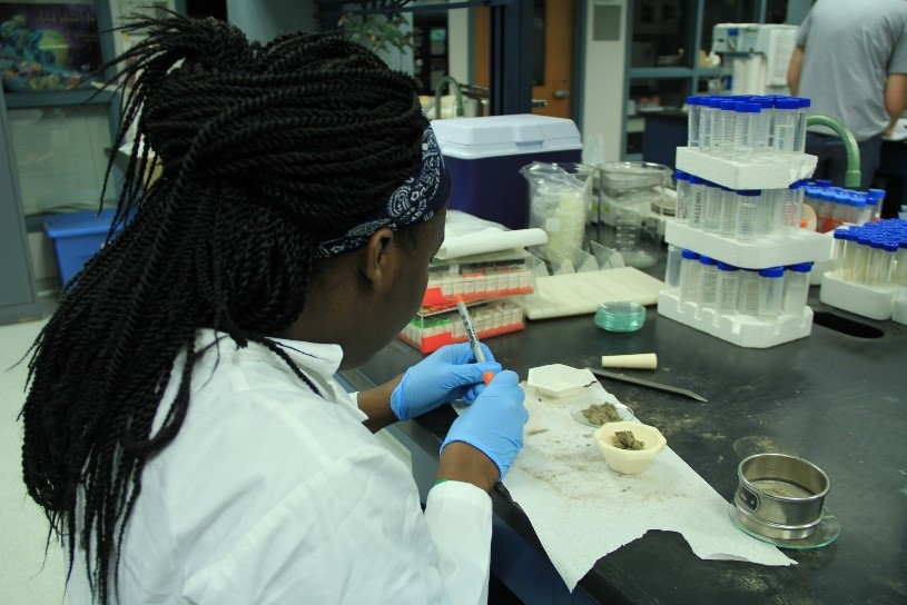 Isheka Orr analyzes dust in the Filippelli lab. Orr, from Claflin University. is participating in IUPUI's Diversity Summer Undergraduate Research Opportunity Program.